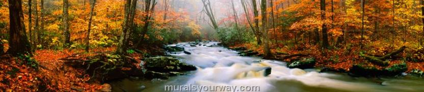 fall on watahootchie river, west virginia